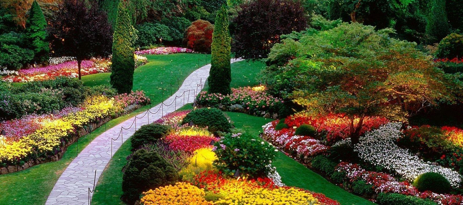 Оптимальные цвета в ландшафтном дизайне