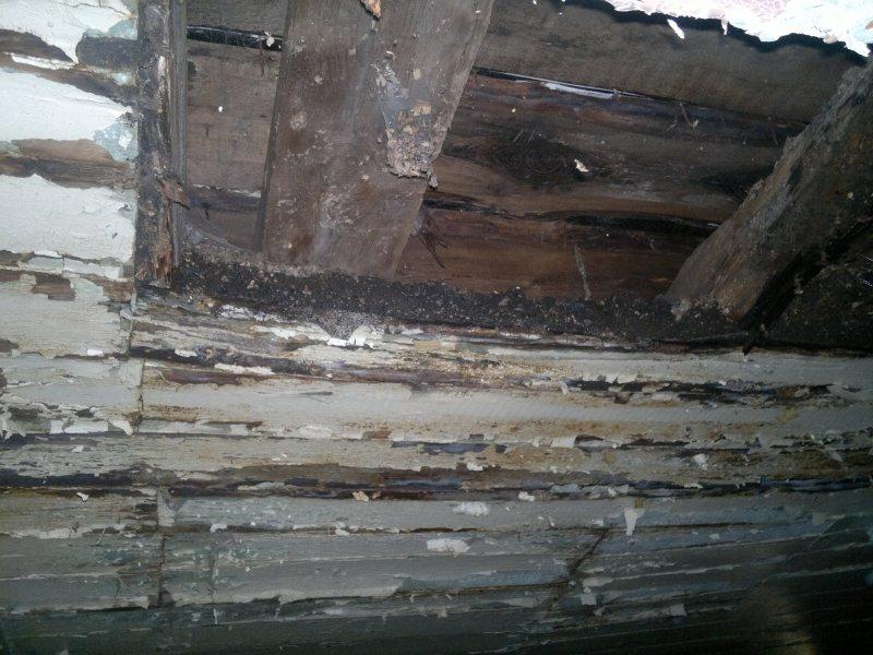 Вид потолка с прихожей.