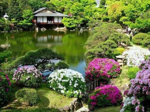 Китайский цветник в саду
