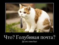 1328598910_demotivatory_27 - Размер 34,68К, Загружен: 56