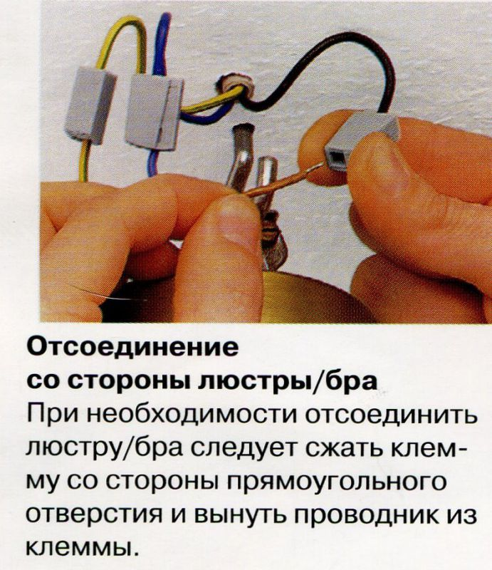 image47.jpg