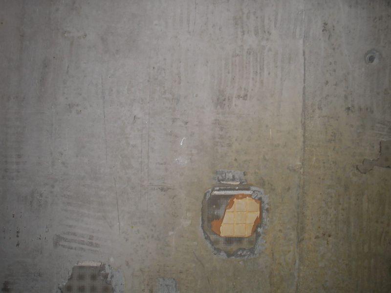 P1010024-1 - Размер 164,33К, Загружен: 0