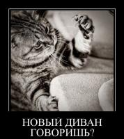 post-15106-1332499687_thumb.jpg