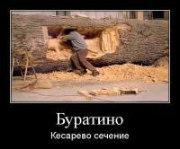 1330498016_demotivatory_22 - Размер 66,74К, Загружен: 52