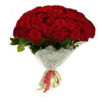 post-35955-0-81087700-1398578398_thumb.jpg