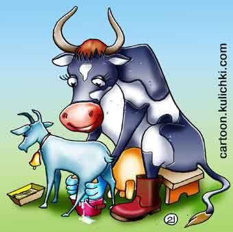 Лаб.работа 2 (часть вторая) Общепитовская. Коза и корова.