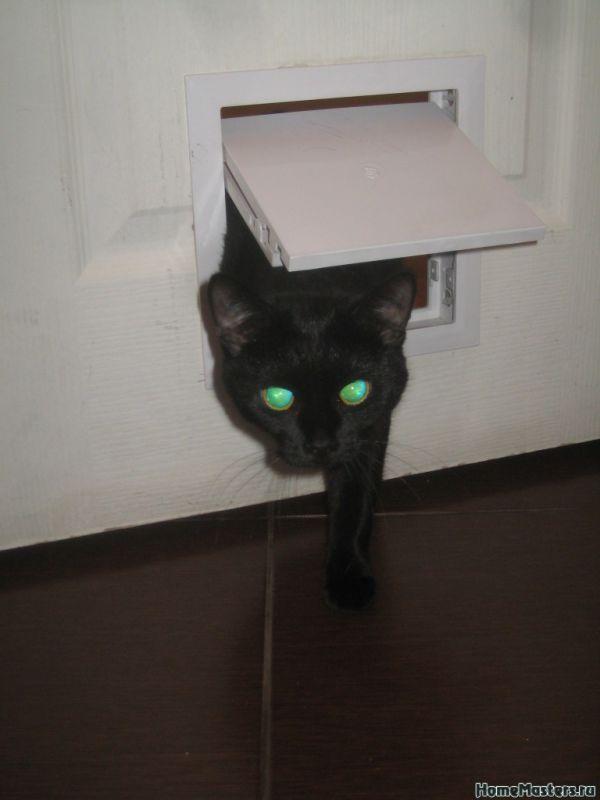 Дверца для кошек своими руками фото пошагово 59