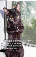 post-16515-1245267759_thumb.jpg