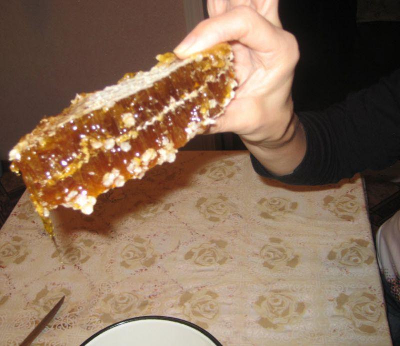 Мёд в сотах1 - Размер 99,39К, Загружен: 0