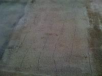post-30937-1250516026_thumb.jpg