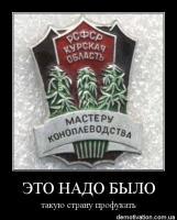 post-9894-1312898511_thumb.jpg