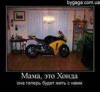 post-82517-1343919774_thumb.jpg