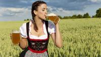 beer 1 - Размер 122,95К, Загружен: 0