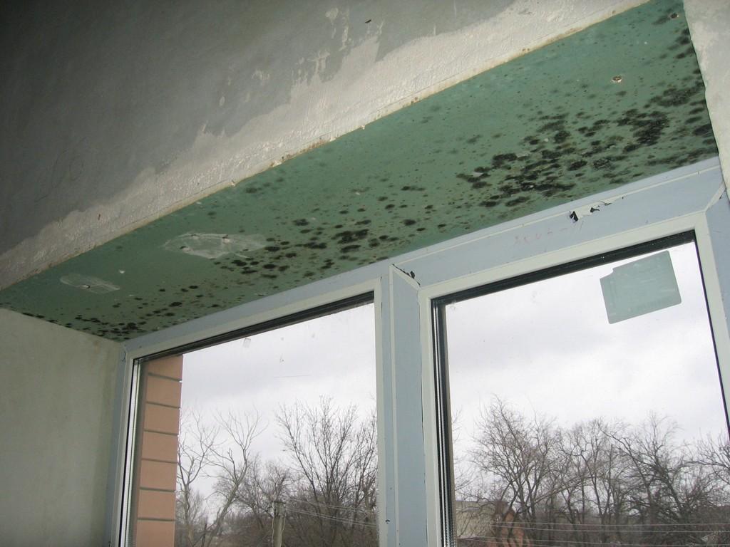 Откосы на пластиковые окна - гипсокартон - пластиковые окна .