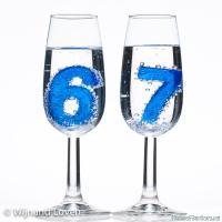67-in-champagne-glazen - Размер 135,21К, Загружен: 10