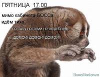 post-73269-0-24312800-1382698759_thumb.jpg