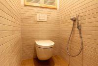 гигиенический душ 2 - Размер 367,94К, Загружен: 811