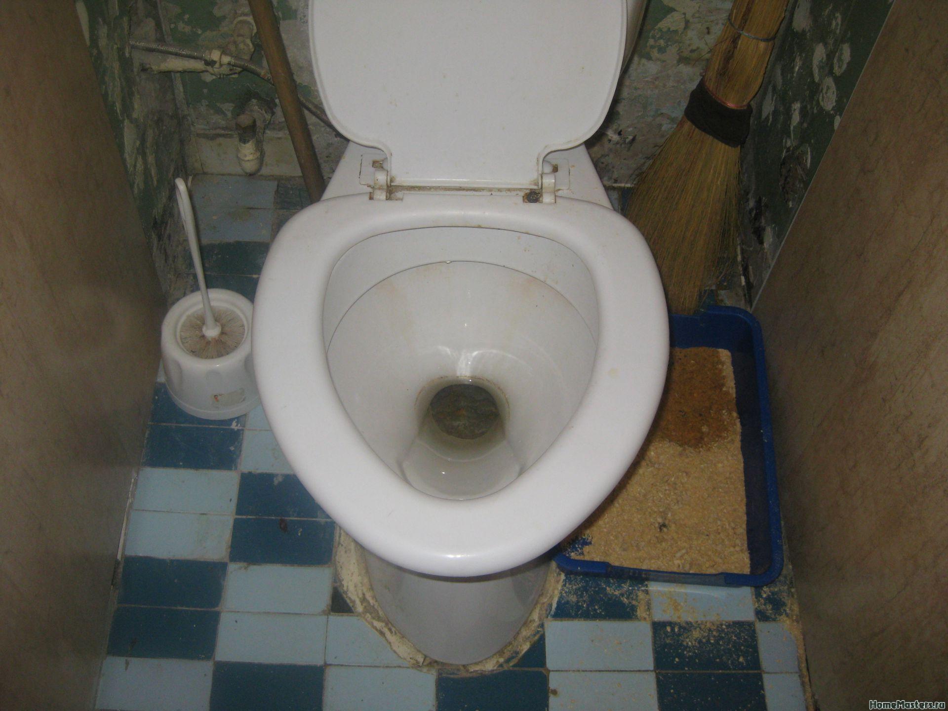 Бюджетный туалет своими руками фото 891
