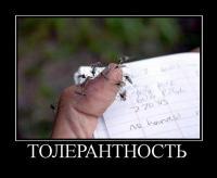 Tolerastia - Размер 37,14К, Загружен: 64