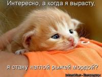 post_14662_1264181486_thumb - Размер 32,03К, Загружен: 343