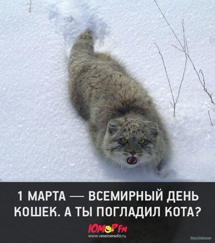 image.jpg.818123b100e4fd90b635ccea06e3aafc.jpg