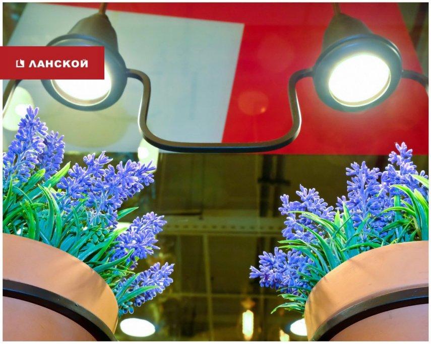 salon_08.jpg