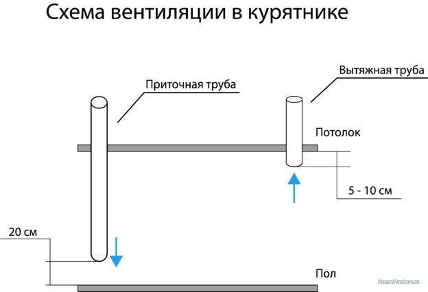 Вентиляция в курятнике своими руками: схемы, устройство, Коломна (фото)